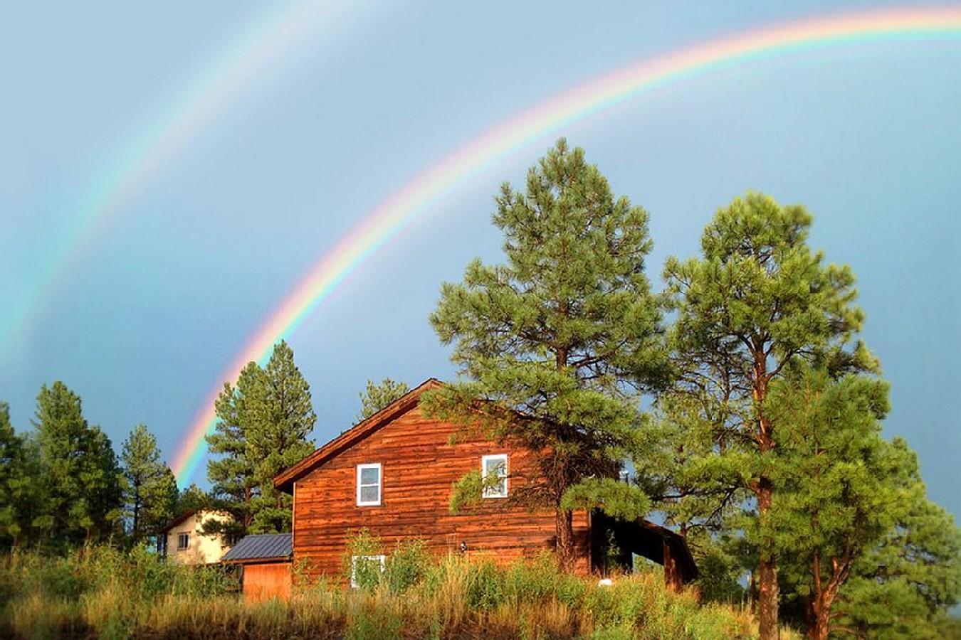 Split Pine Cabin